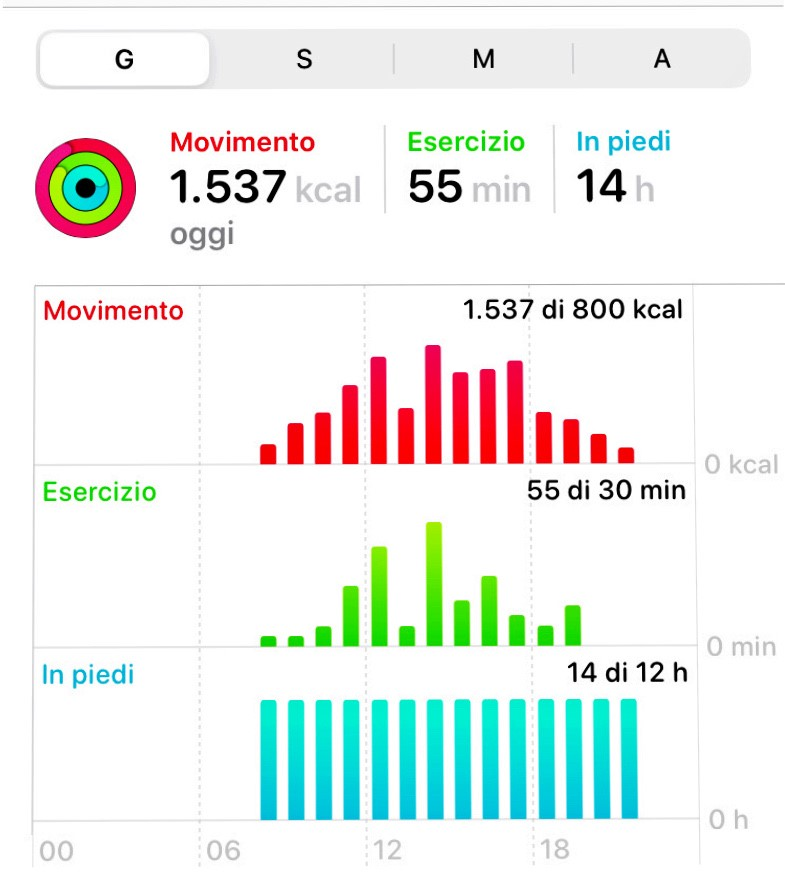 Daily activity report from a smart watch